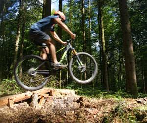 cykleropstillettill optimized
